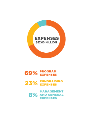 expense-graphic